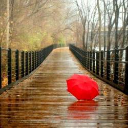 عکس پروفایل هنری / چتر قرمز
